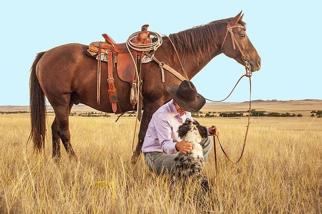 kovboj s koněm a se psem