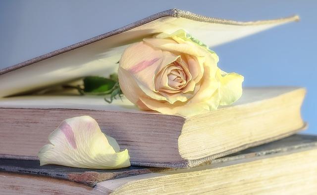 růže v knize